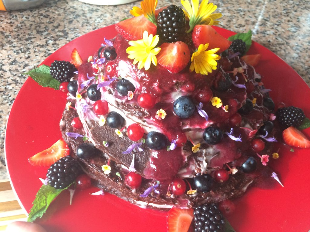 Cocoa and Red Berries Raw Vegan Cake